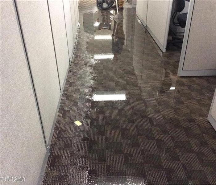 water flooding carpet between cubicles