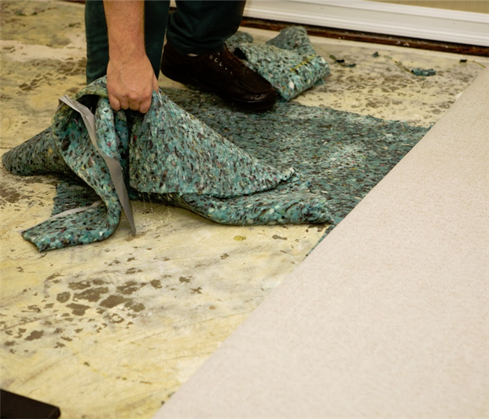 man ripping up a flood damaged carpet